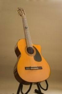 standing-guitar-vector_21064931