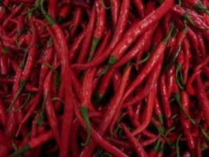 red-chillies_2838447