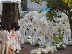 『レビュー・ステイション』2017.5.29「早霧せいなラストデイ」15