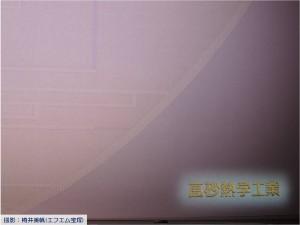 『レビュー・ステイション』2017.9.15宝塚大劇場新緞帳お披露目2