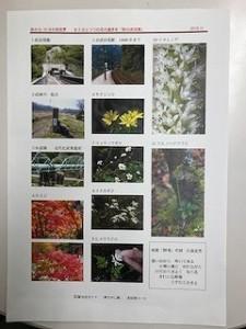 s-IMG_0972