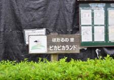 s-DSC_0679