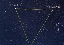 s-100007219